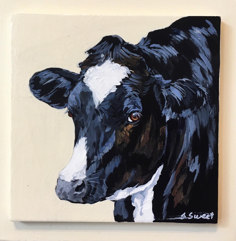 Calf on Buttermilk