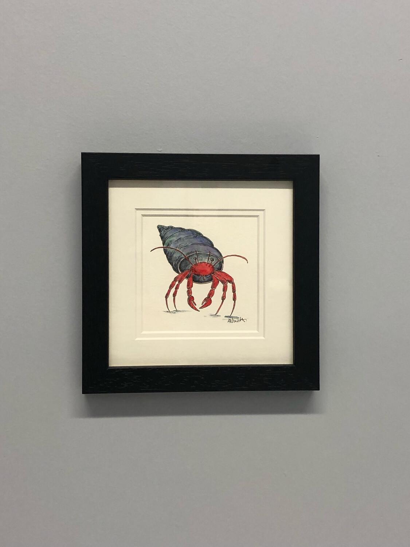 Hermit Crab Dark Background - Amy Nemeth