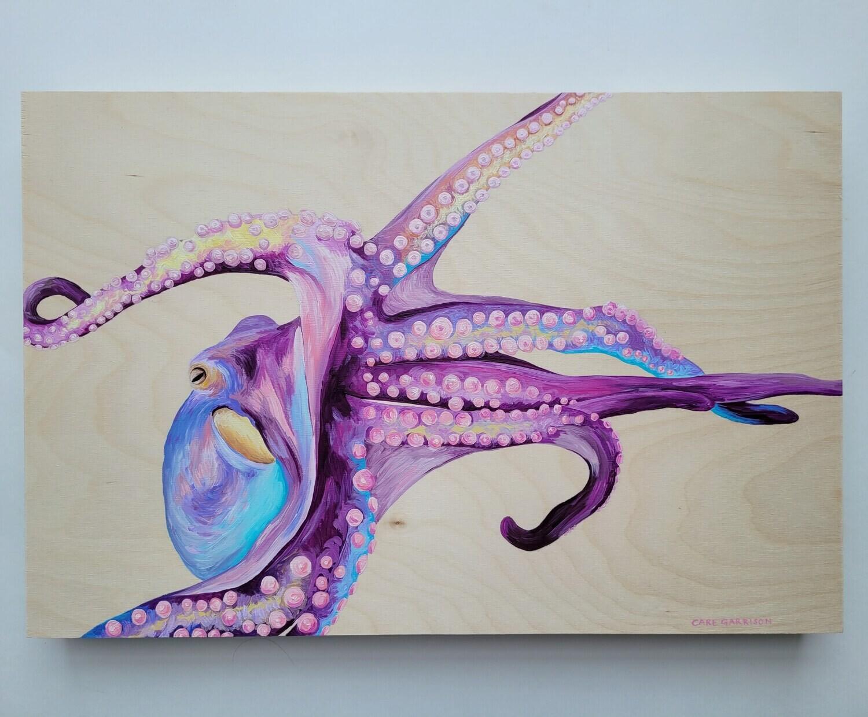 Cotton Candy Octopus - Care Garrison