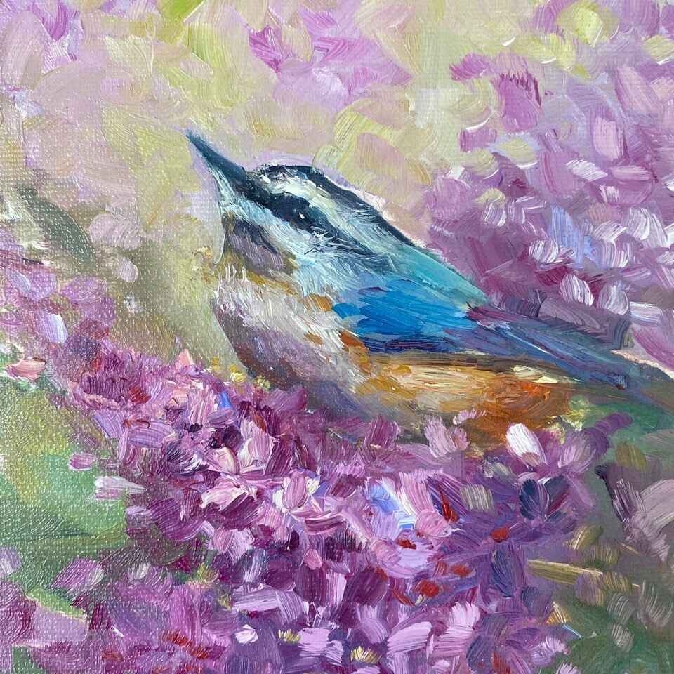 Contentment, Nuthatch