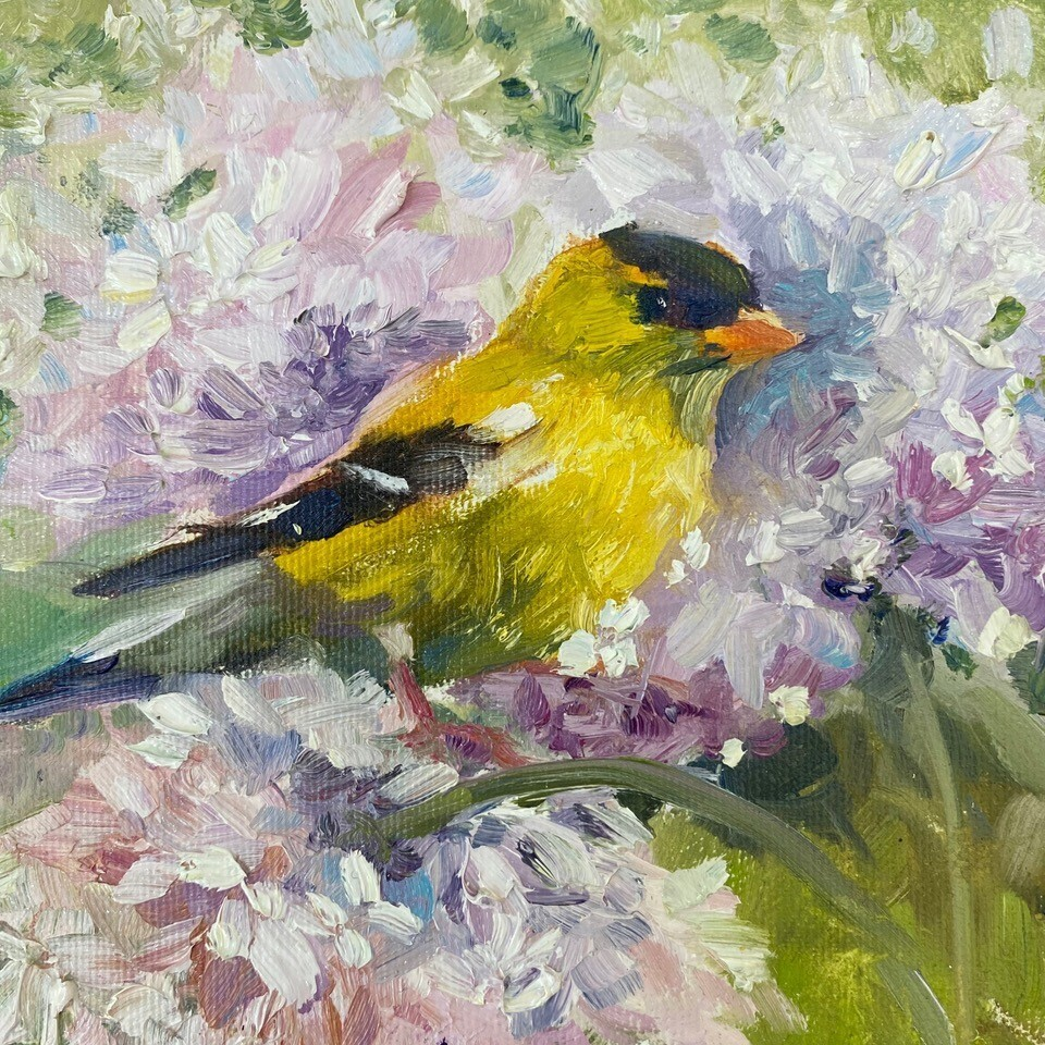 Finding my Way, Goldfinch