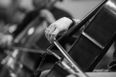 Symphony Orchestra 50 pcs.