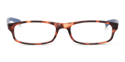Looplabb reading glasses l'Etranger turtle brown/blue