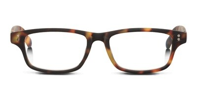 Looplabb reading glasses Shannara turtle brown