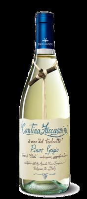 Cantina Zaccagnini - P/Grigio