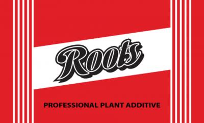 Elite91 - Roots