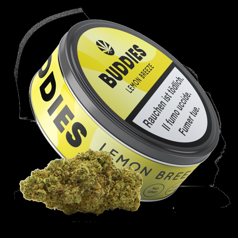 Buddies - Lemon Breeze