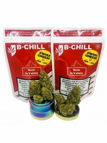B-Chill - Swiss Cheese Indoor