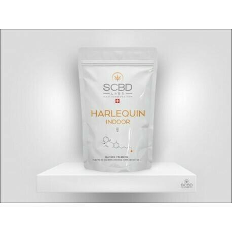 SCBD LABS - HARLEQUIN Indoor 2gr