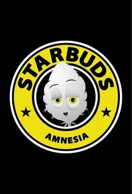 STARDBUDS - MiniBuds Amnesia