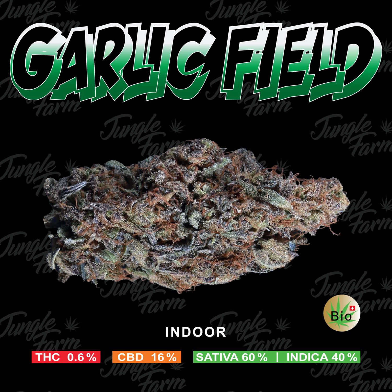 JUNGLE FARM - GARLIC FIELD 5gr