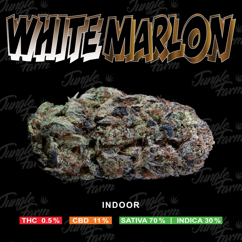 JUNGLE FARM - WHITE MARLON