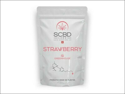SCBD LABS - STRAWBERRY Greenhouse 2gr