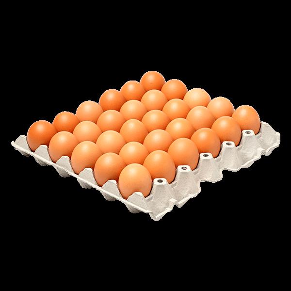Huevo Rojo AAA