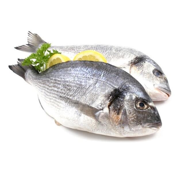 Pescado Chivo