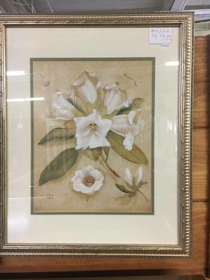 Framed Art - White flowers