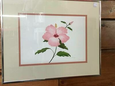 Framed Art - Pink Hibiscus - Betty Curley Badger​