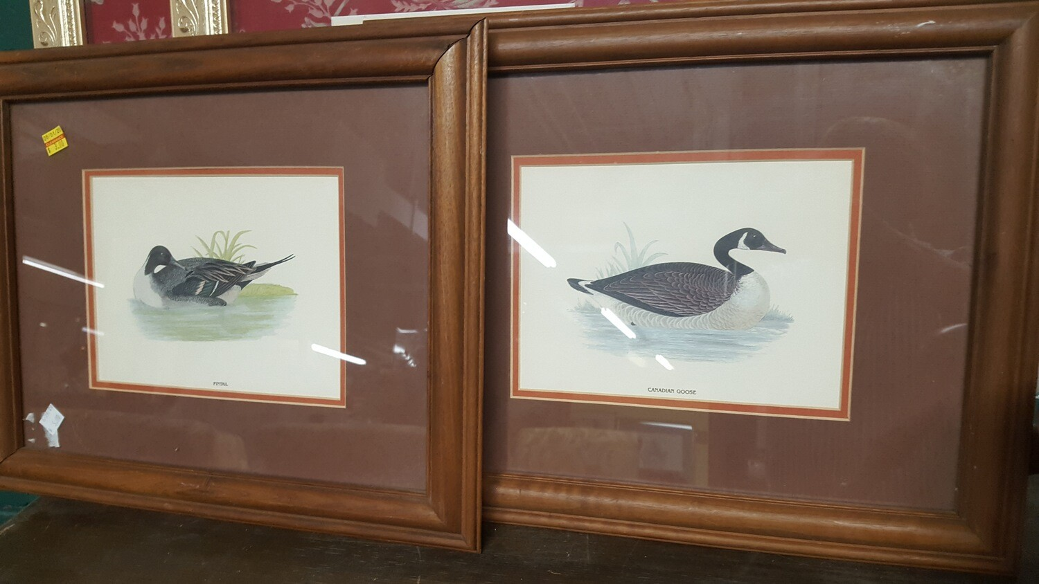 Framed prints, waterfowl (CL)