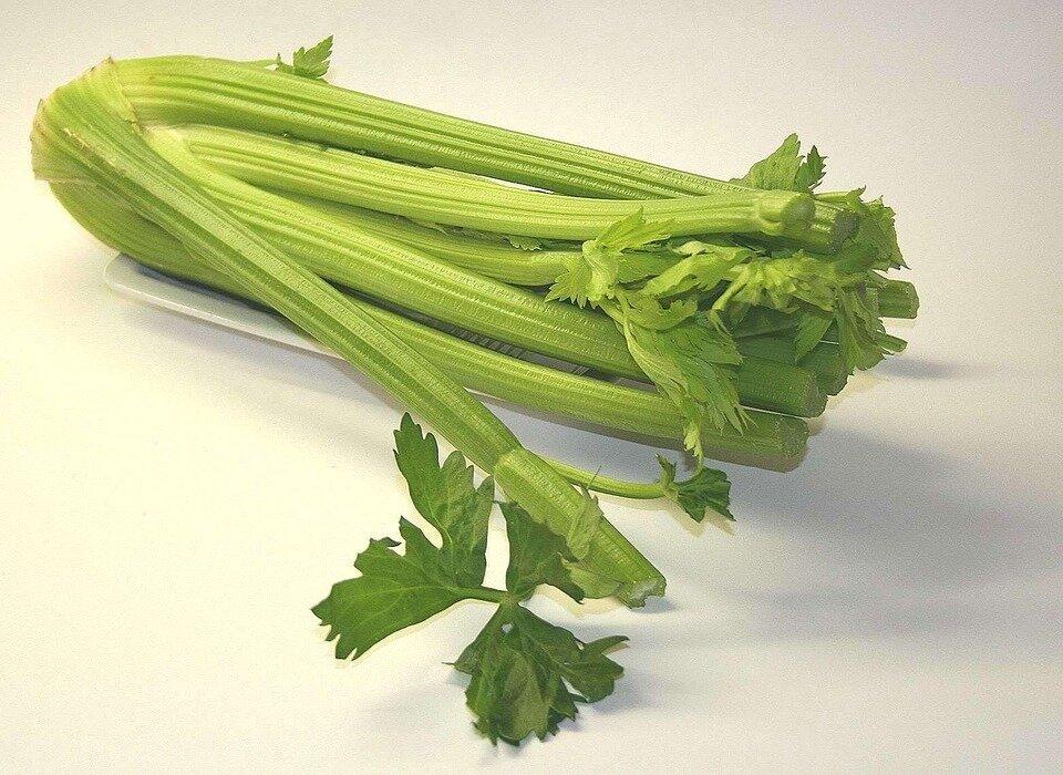 Celery 美國芹菜