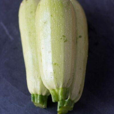 Calabacita墨西哥方瓜