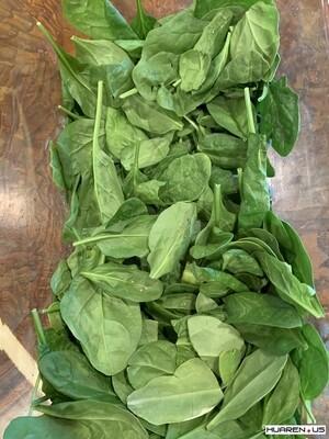 Baby Spinach袋裝波菜