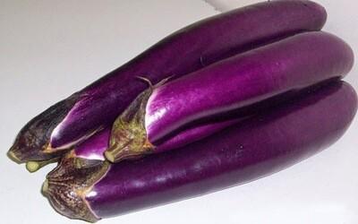 Chinese Eggplant中茄