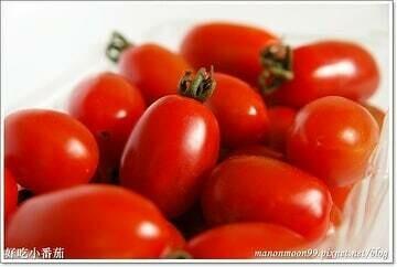 roma tomato 番茄