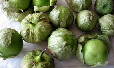 Tomatillo 酸浆果