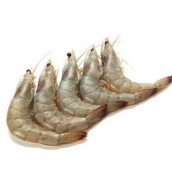 Shrimp Head on 帶头虾