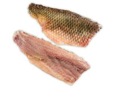 Yellow Carp 黄鲤鱼