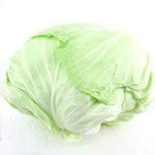Taiwan Cabbage 台灣高麗菜