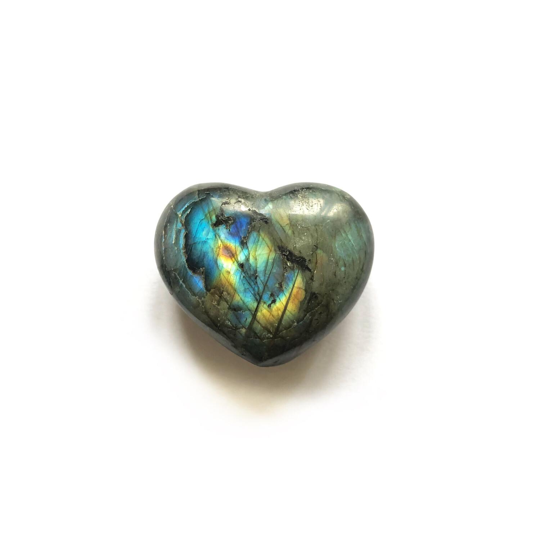 Сердце лабрадор, 1 шт