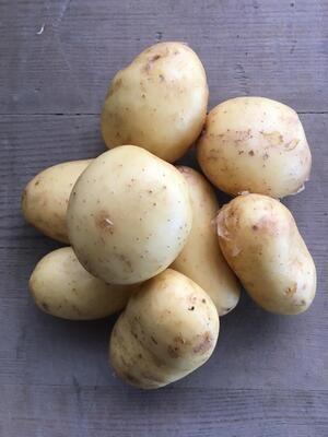 Kartoffeln, festkochend / Vitabella (1 kg)
