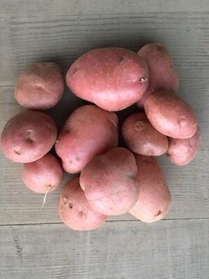 Kartoffeln, mehligkochend /
