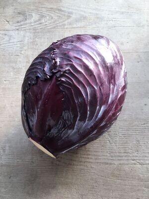 Kabis rot (pro Stück)