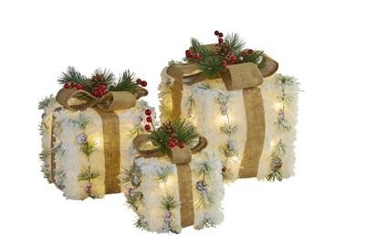Snowy Giftbox S/3