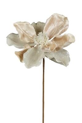 Magnolia Cream/White