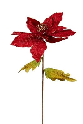Poinsettia Red/Gold
