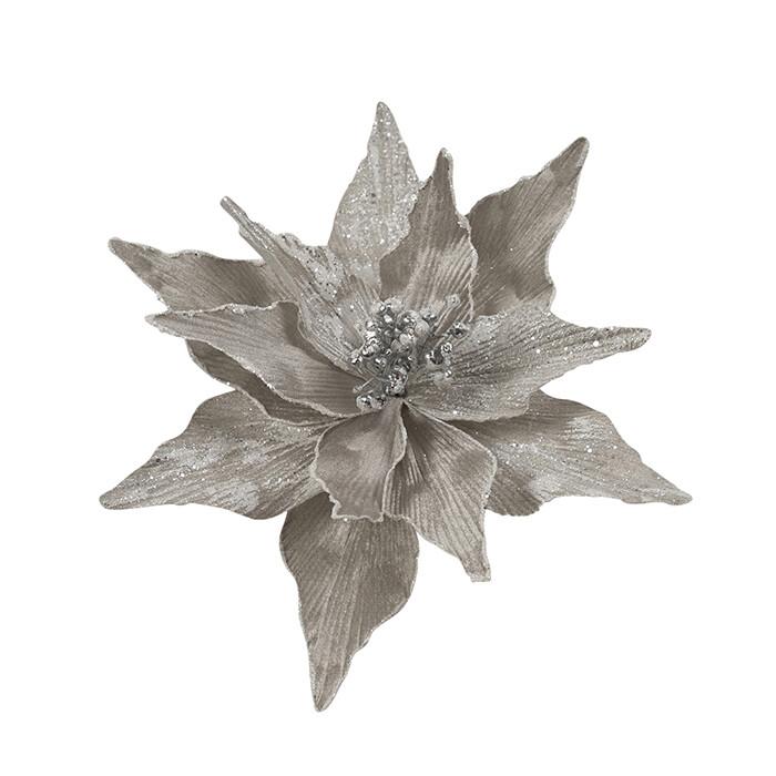 Poinsettia Silver White Edge