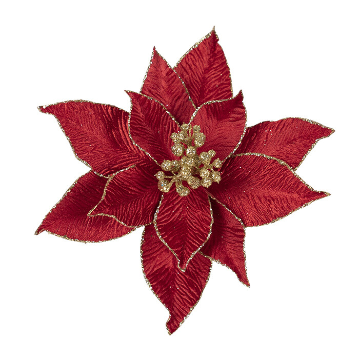 Poinsettia Red Gold Berries