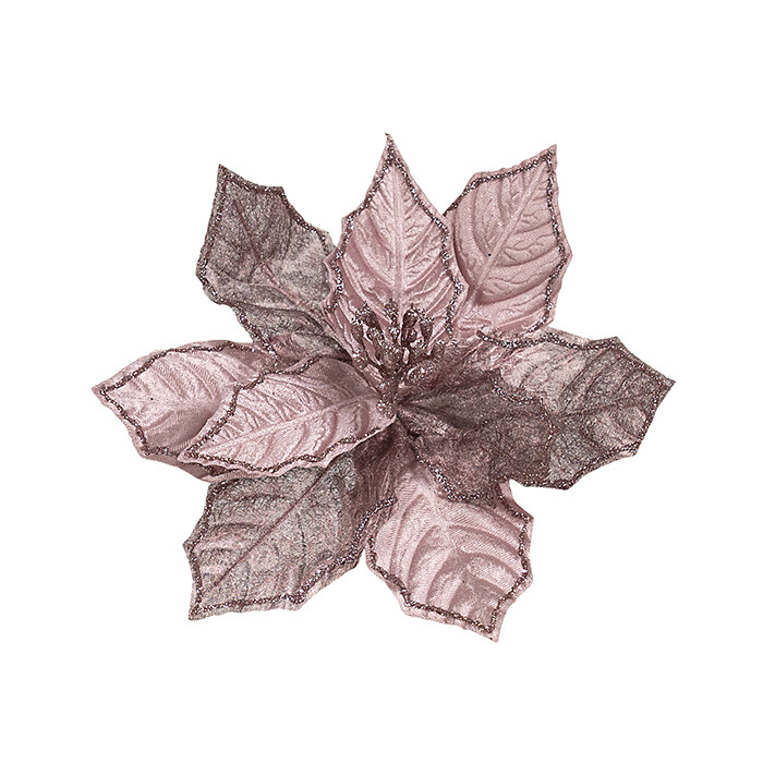 Poinsettia Sheer Pink