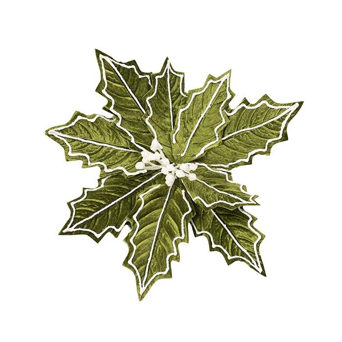 Poinsettia Holly Green White Edge
