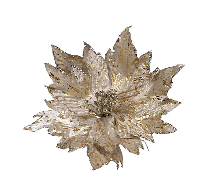 Poinsettia Cream Gold Leafing