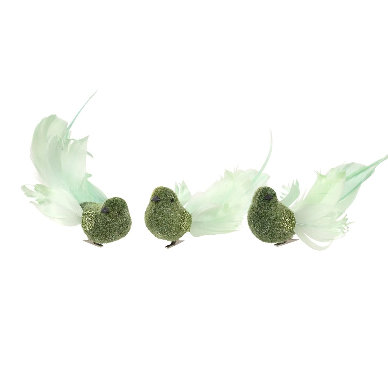 Birds-Dark Green B