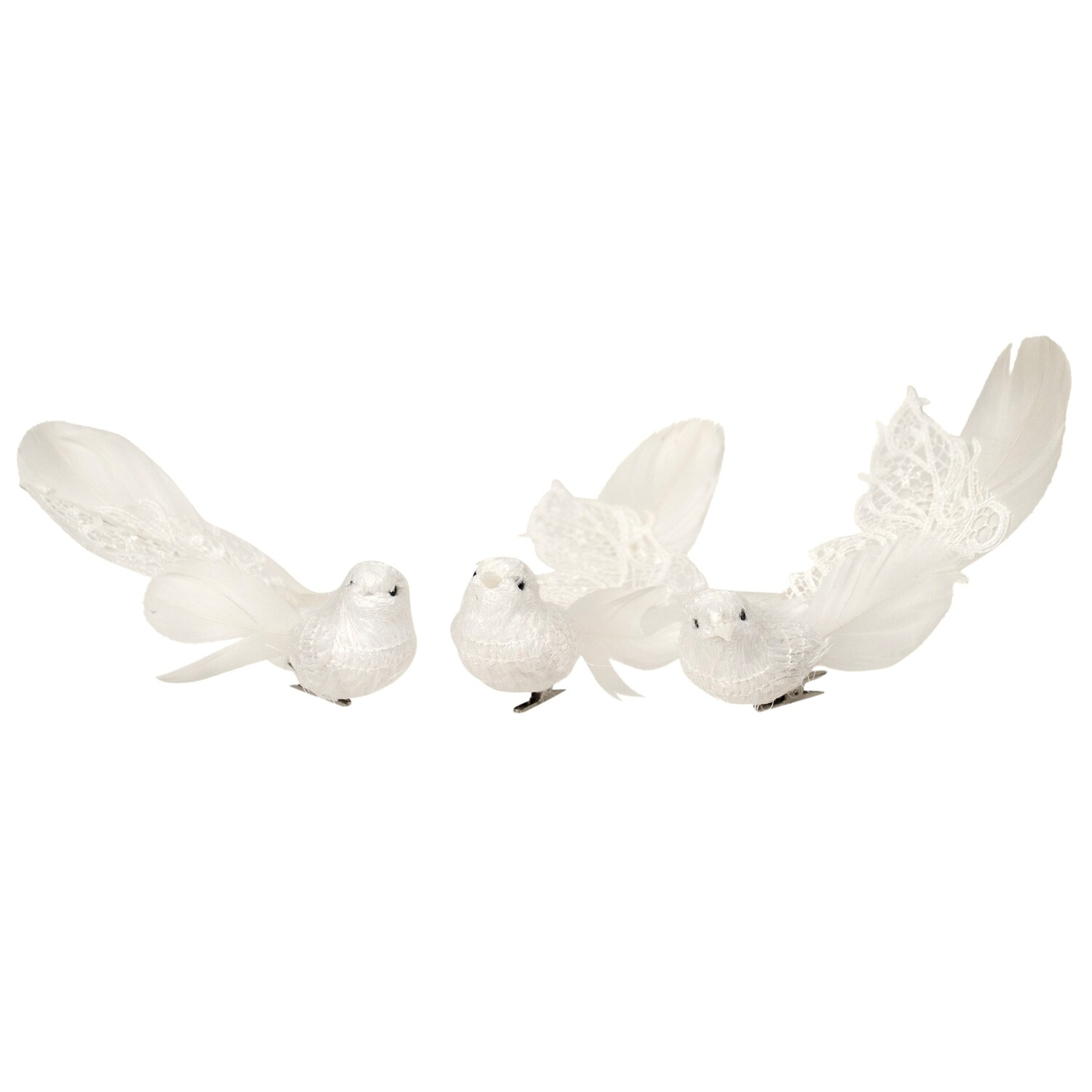 Birds-Feather White Plume Tail A