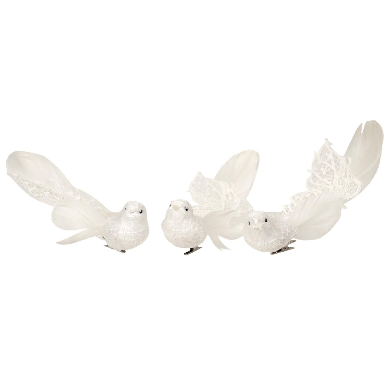 Birds-Feather White w Plume B