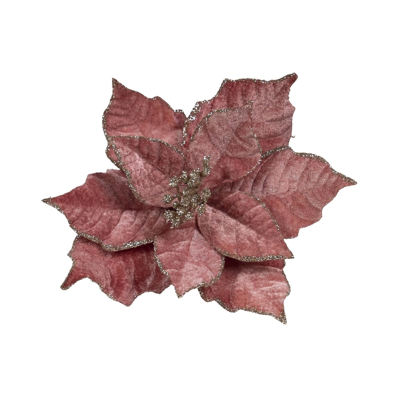 Poinsettia-Dark Pink
