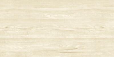 Pars Wood White 60*120