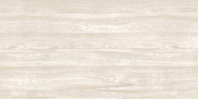 Pars Wood Milky 60*120