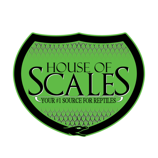 House of Scales